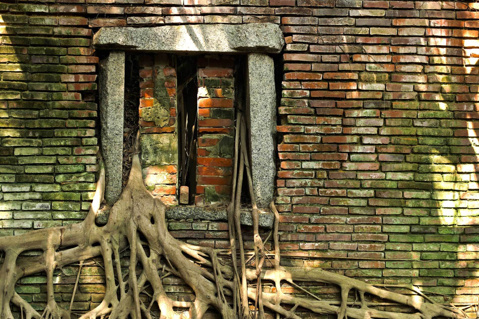 Brick Window in Roots