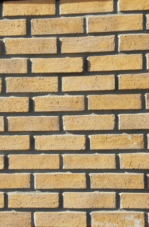 South Middle Brick Wall